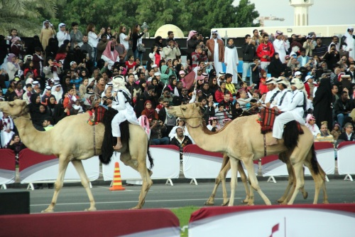 Every parade should have camels.